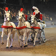 A Review Of The London International Horse Show