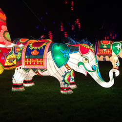 Explore the fabulous 'Festival of Light' at Longleat