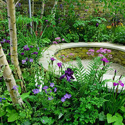 Fun Facts about the Chelsea Flower Show