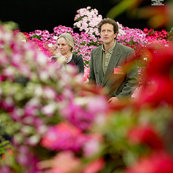 Get a Taste of the Chelsea Flower Show in 2016