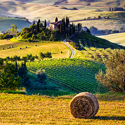 Planning Your First Coach Tour to Italy