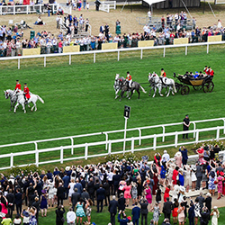 Ascot Ladies Day Coach Trips