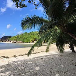 My Once-in-a-lifetime Trip to the Seychelles