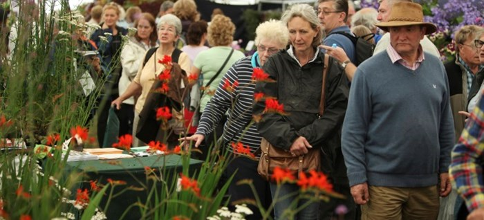 Visitors admiring displays in the Floral Marquee