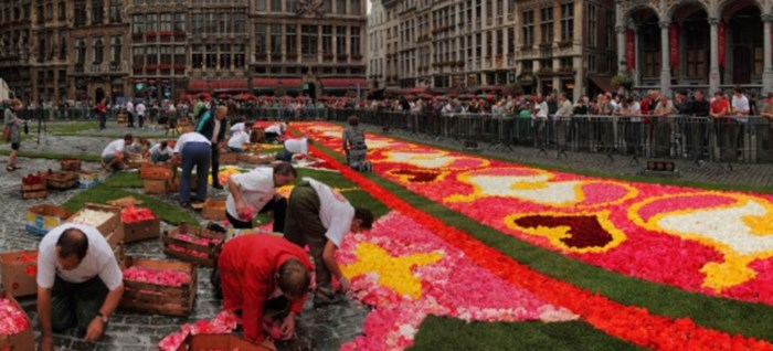 The Flower Carpet starting to take shape