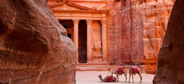 Petra with Camels