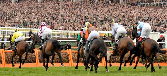 Cheltenham festival packages